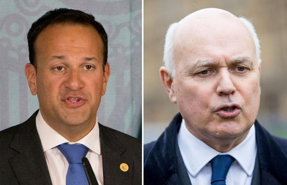 Irish PM Leo Varadkar sparks Brexiteer fury by saying Britain can't be allowed to 'destroy' EU