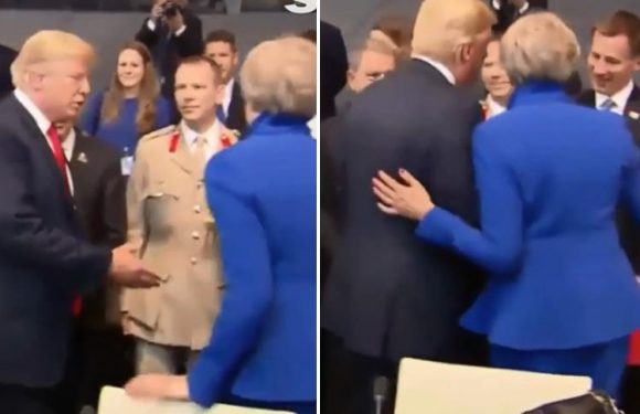 Theresa May used Donald Trump's own 'power pat' manoeuvre on the US President after snubbing his handshake at Nato summit, expert reveals