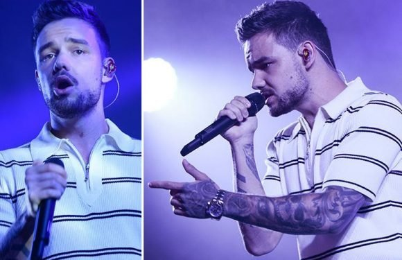 Liam Payne puts on bizarre American accent as he performs at a festival in France