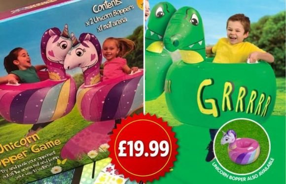 B&M is selling unicorn and dinousaur bopper games for £19.99 – and your kids are going to LOVE them