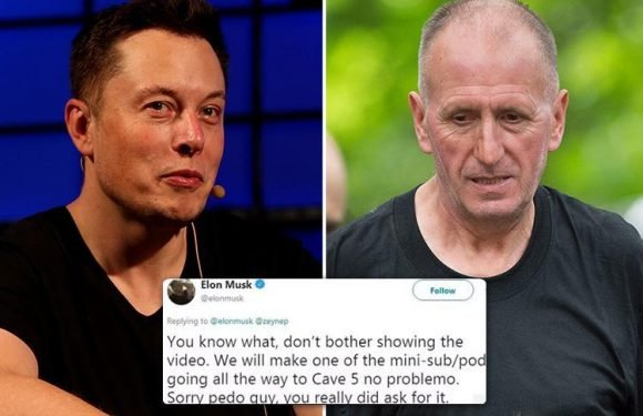 Elon Musk makes vile 'paedo' slur at British hero Thai cave diver who saved trapped boys and claims he 'didn't see him' at rescue