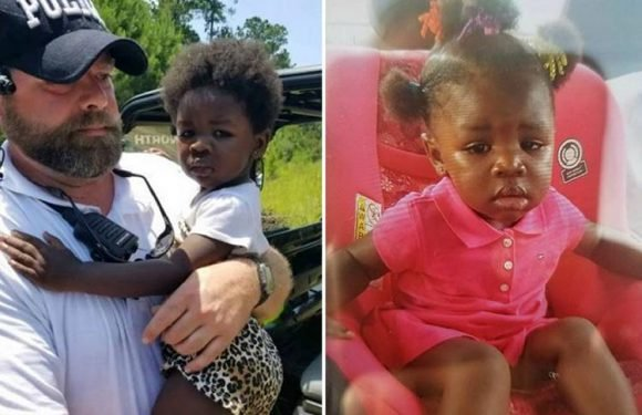 Incredible moment crying two-year-old girl is rescued from alligator- and snake-infested forest after getting lost from mum for 18 hours