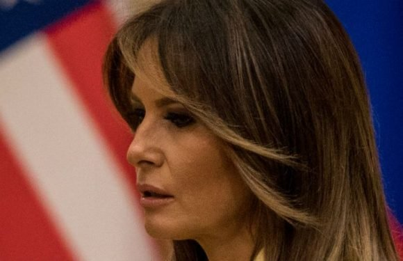 Melania Trump Looked 'Horrified' When Shaking Hands With Vladimir Putin, Twitter Users Notice