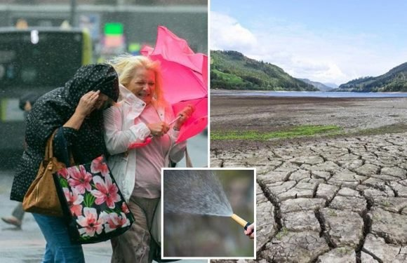 Water firm urging snoops to shop neighbours using hosepipes for £1,000 fines despite storm deluge