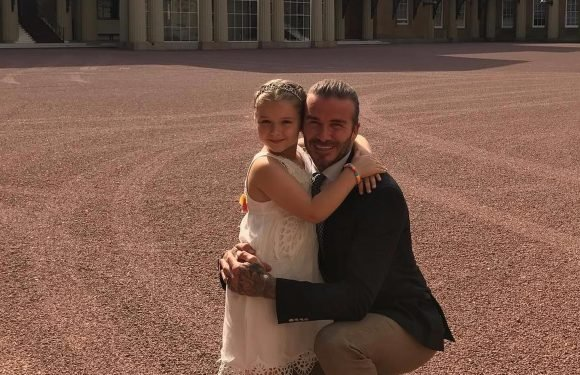 David and Victoria Beckham treat daughter Harper to a £7,000 pony for her 7th birthday
