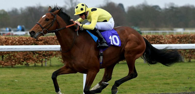 Christmas can come early on Thursday with Barsanti fancied to bounce back in the Princess Of Wales's Stakes at the July Festival