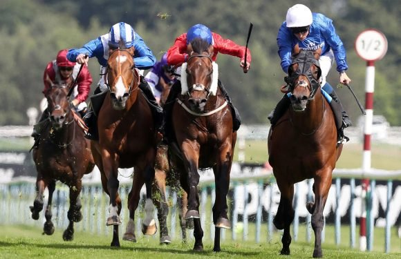 Today's FREE horse racing tips: Glorious Goodwood – Steve Mullen's betting preview for Tuesday, July 31