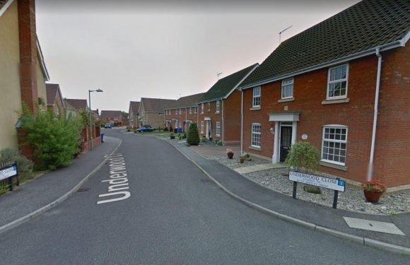 Two dead after being knifed in separate stabbings on Britain's streets