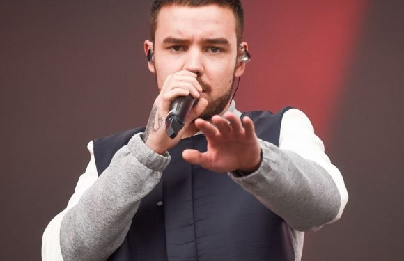 Liam Payne 'clashes' with another Cheryl ex at London restaurant after split