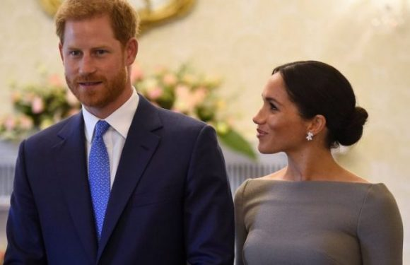 Why Prince Harry Said That He and Meghan Markle Will Not Have Many Kids