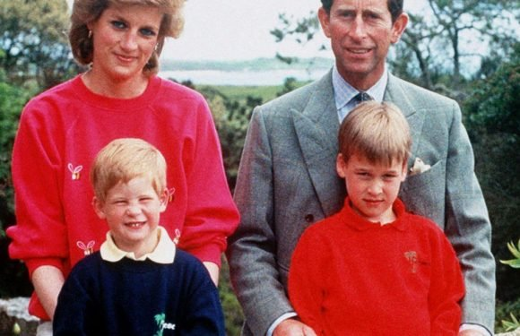 Heartbreaking promise William made to Diana when she had HRH title taken away