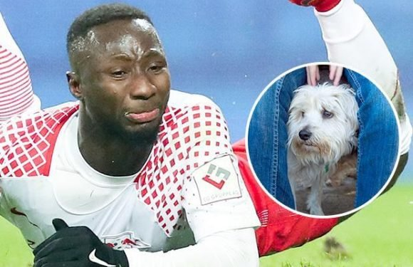 Liverpool new boy Naby Keita reveals he has an irrational fear of small dogs