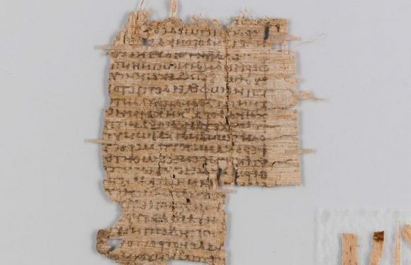 Scientists Finally Decipher The Mystery Of The 2,000-Year-Old Basel Papyrus