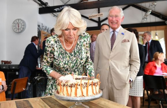 Camilla Celebrates 71st Birthday on Tour — and Even Her Cake Is Following Royal Protocol!