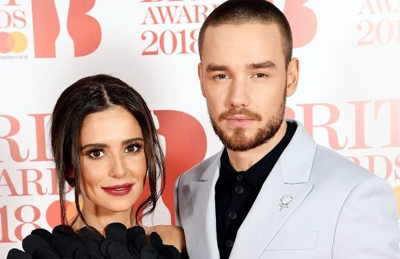 Liam Payne, Cheryl Cole Split After More Than Two Years Together