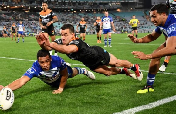 Dogs bury Tigers' finals hopes, but Gould provides some consolation