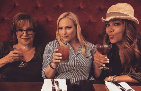 'The View' Offers Photographic Proof Joy Behar and Sunny Hostin Don't 'Hate' Meghan McCain