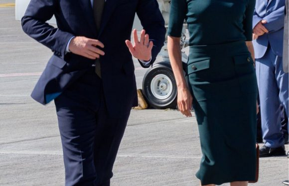 Meghan and Harry Touch Down in Dublin! See the Newlyweds' First Ever Airport Arrival