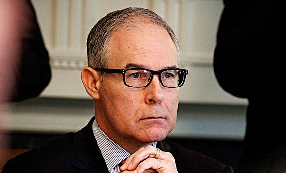 Kristin Mink: 5 Things To Know About Teacher Who Told Scott Pruitt To Resign In A Restaurant