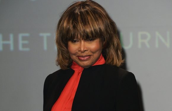 Tina Turner spreads son's ashes after his suicide
