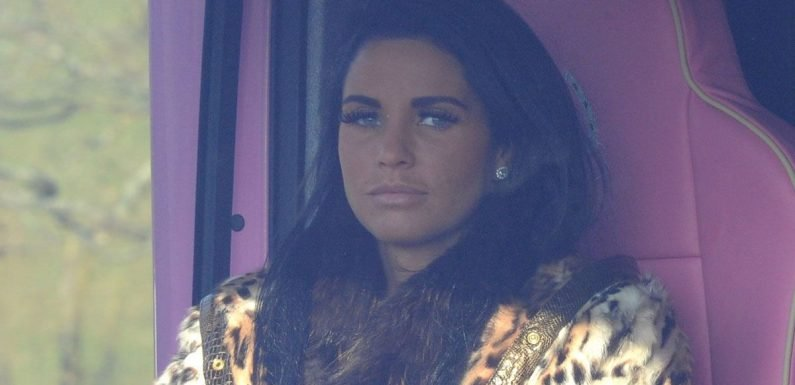 Katie Price quizzed by police after driving without a licence