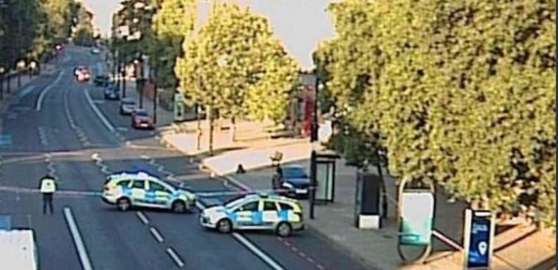 Woman in her 20s killed after being struck by car as police hunt driver