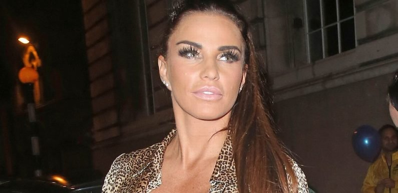 Katie Price mum-shamed for sharing x-rated pic of Kris Boyson groping her boob