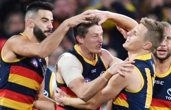 Crows turn the tables with controversial late goal
