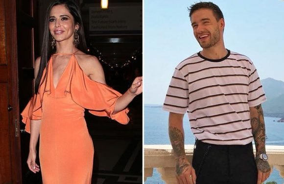 Cheryl 'WON'T rush into a new relationship and is determined to stay civil with Liam Payne'