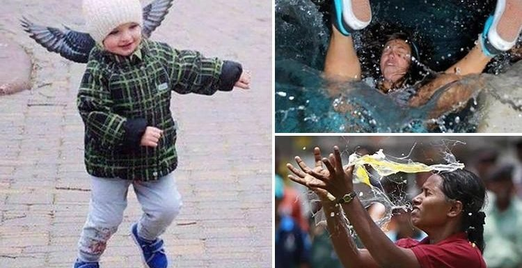 Timing is everything with these brilliant 'caught in-the-moment' snaps shared on social media