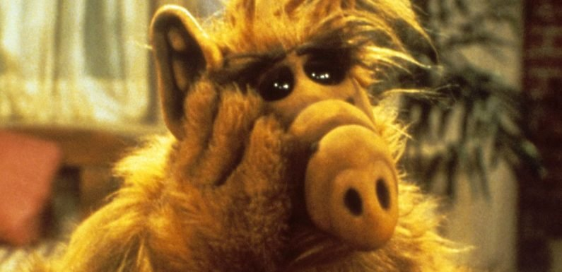 ALF set for TV return with reboot in the works