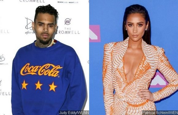Chris Brown Flirts With 'Pretty Little Liars' Star Shay Mitchell on Instagram