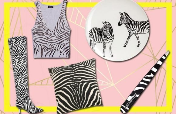 Gettin' ziggy with it! These zebra-print picks are an easy update for your wardrobe and home