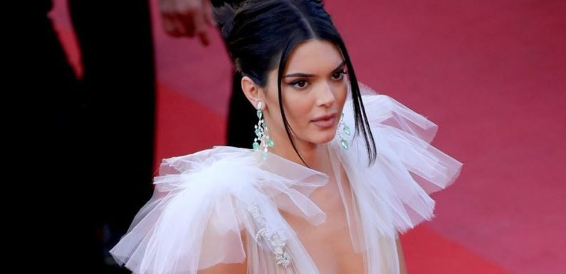 Kendall Jenner Accused Of Fleeing Scene After Her Doberman Allegedly Bit Small Child