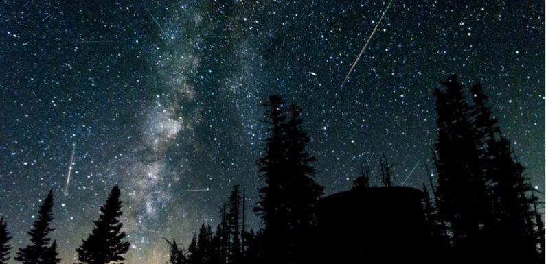 Perseid Meteor Shower 2018: Here's When To Catch The Shooting Stars This August