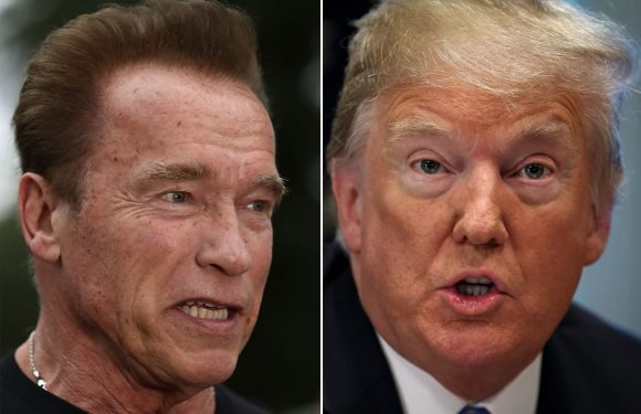 Arnold rips 'fake conservative' Trump over emissions proposal