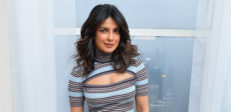 Priyanka Chopra Has Been Cast as Chris Pratt's Love Interest in a New Movie