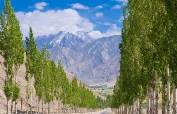 Four tourists killed by car in possible terrorist act in Tajikistan