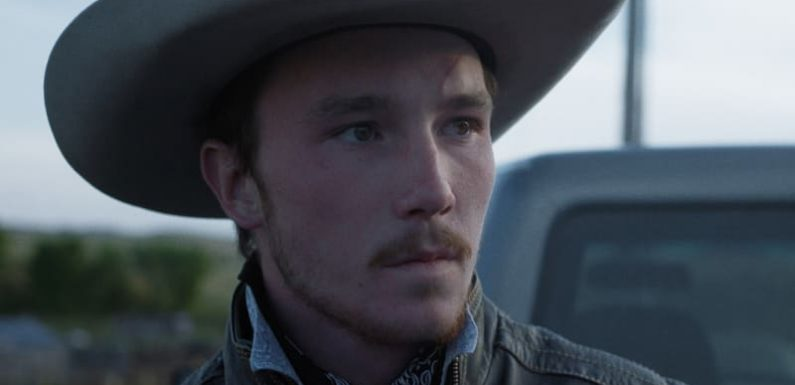 MIFF 2018: The Rider – 'breakout film of the year' – unearths a new star