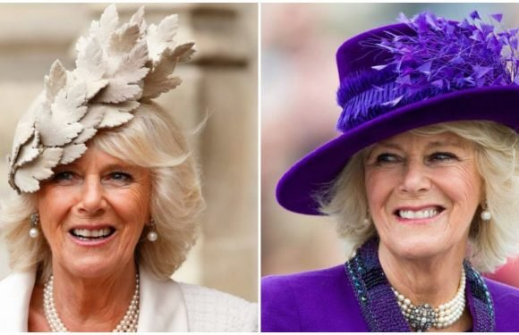 The 30 Best Fascinators and Hats Worn by Camilla Parker Bowles