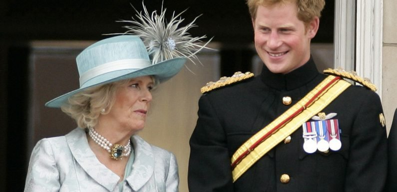 Prince Harry says Camilla is 'not a wicked stepmother'