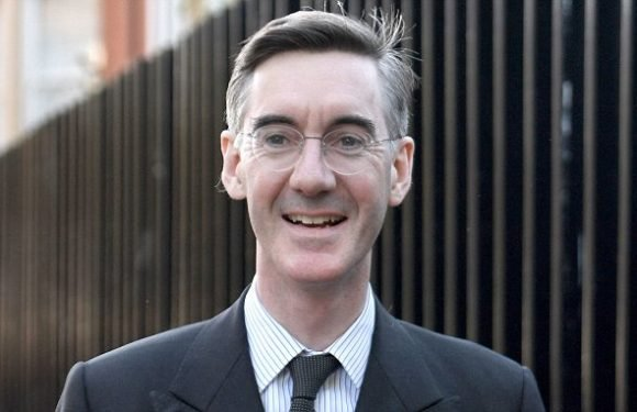 Rees-Mogg says Tories SHOULD build on the greenbelt
