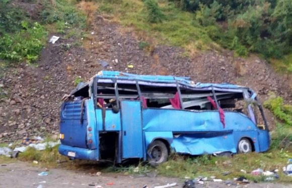 Tourist bus crash kills 15 and leaves dozens injured after 'gorge plunge'