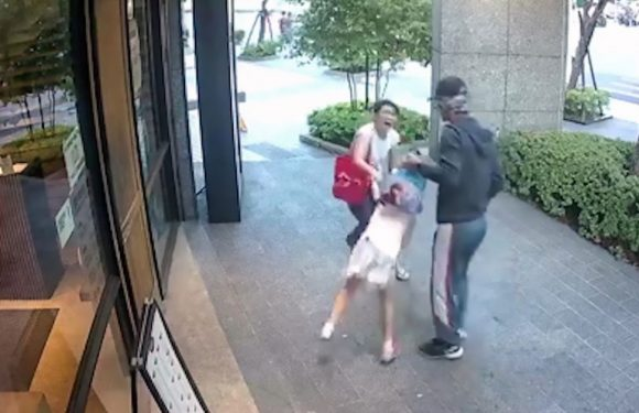 Man tries to snatch little girl by yanking her bag as she walks with her mum