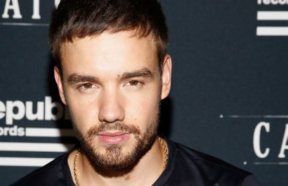 Liam Payne says he loves sex so much it's only right he sings about it
