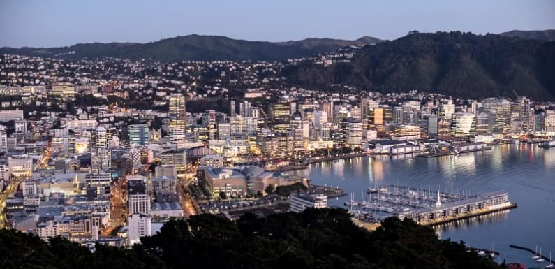 New Zealand to ban foreigners from buying homes