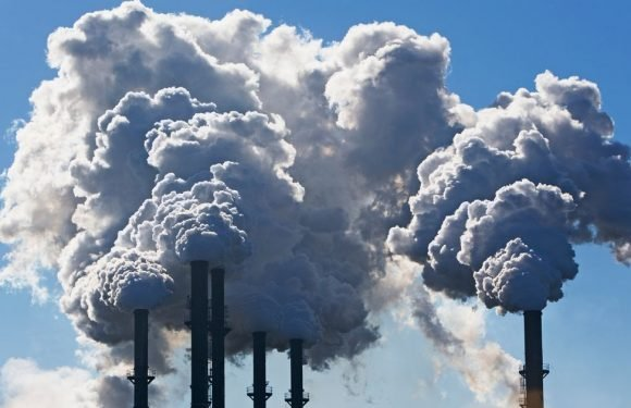 Scientists create lab-grown mineral that can remove CO2 from atmosphere