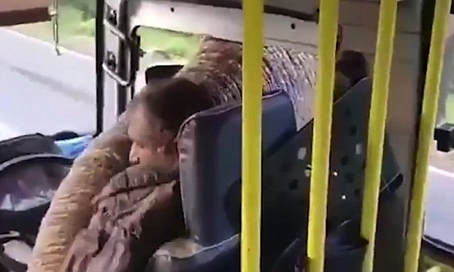 Elephant holds up bus and sticks trunk through window to steal BANANAS