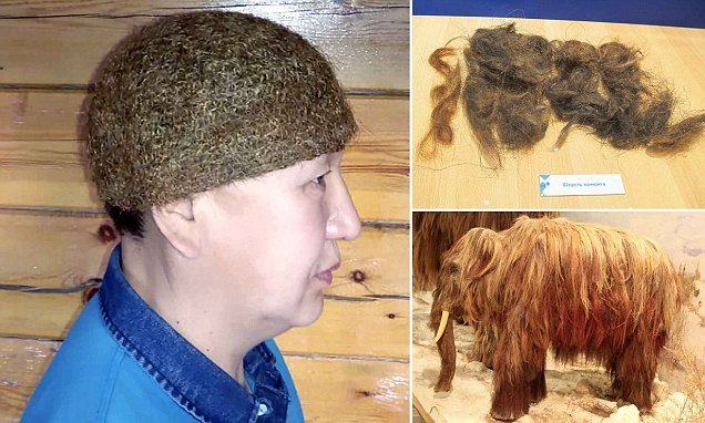 'World's only' woolly mammoth hair hat goes on sale in Russia