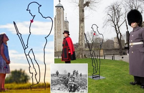 Councils snub WW1 troops by refusing to pay £750 for memorial statue